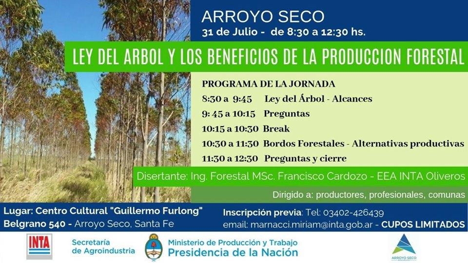 Presentación sobre los alcances de la ley del árbol y producción forestal 🌳👏