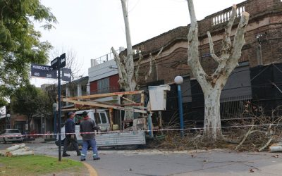 Poda de árboles sobre Mansueto Maiorano y Humberto Primo